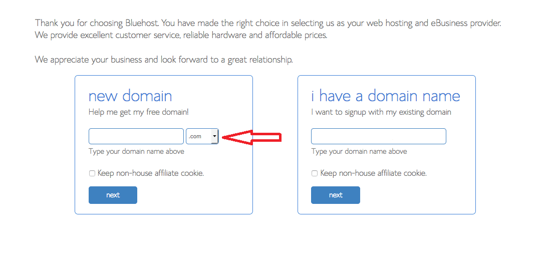 Domain Naam Ka Chayan, Website Kaise Banaye